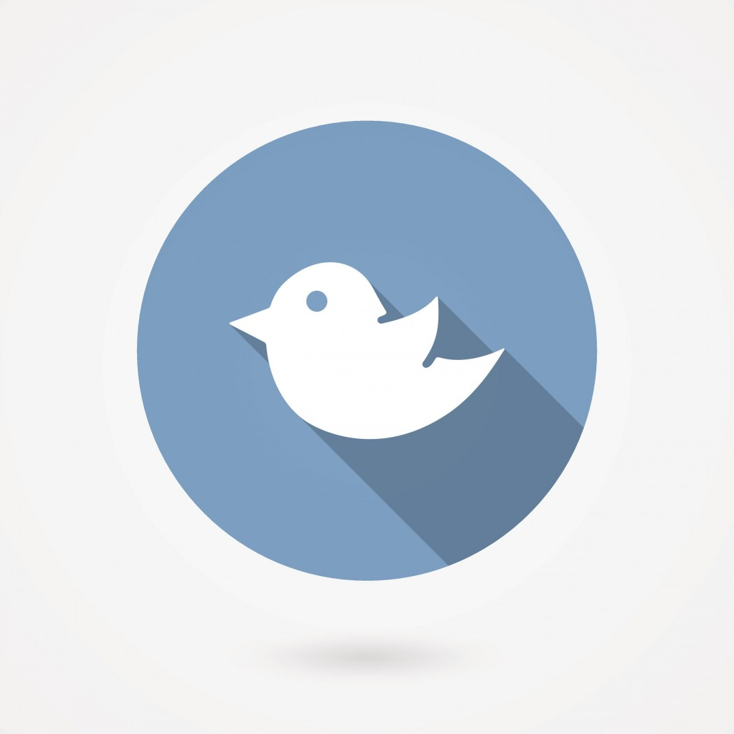 Trendy round blue Twitter bird social media web or internet icon with a long shadow   vector design element on white