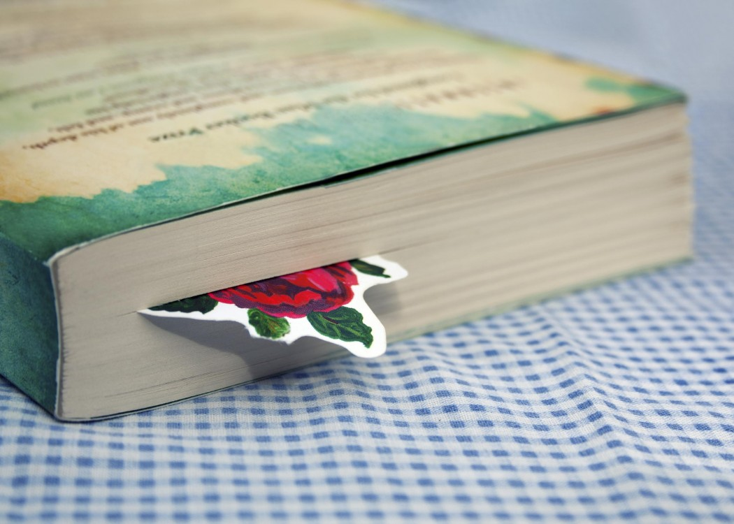 Bookmark, picture of a red rose, in novel on table with blue checkered  table cloth