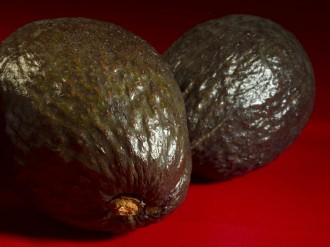 two avacados on red