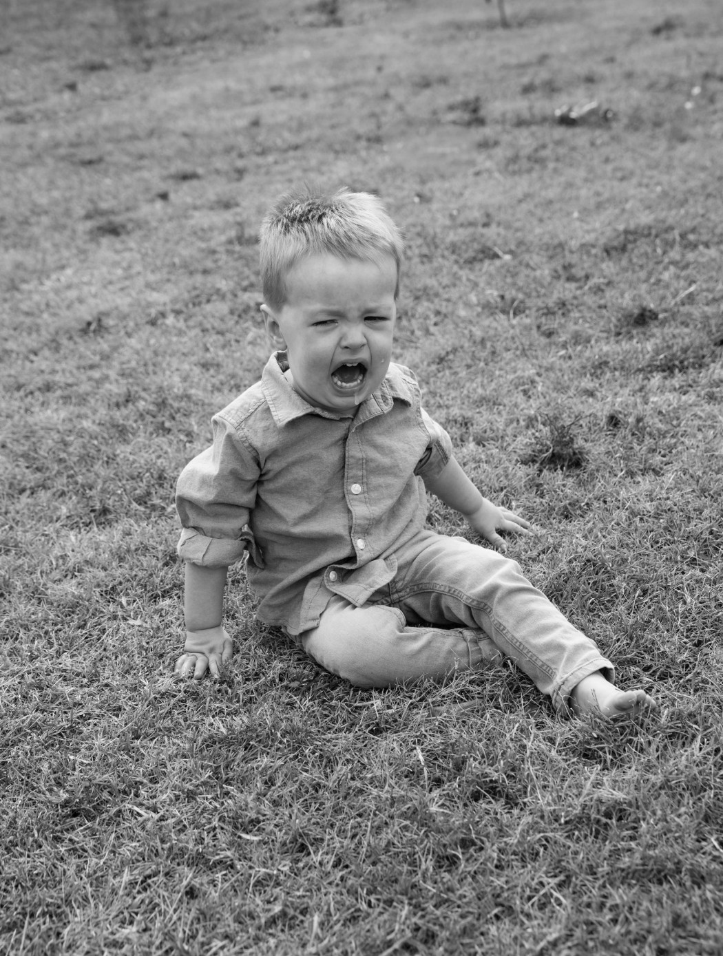 vertical orientation close up of a toddler boy sitting in a field of grass, having a tantrum, in black and white, with copy space / Toddler Tantrum