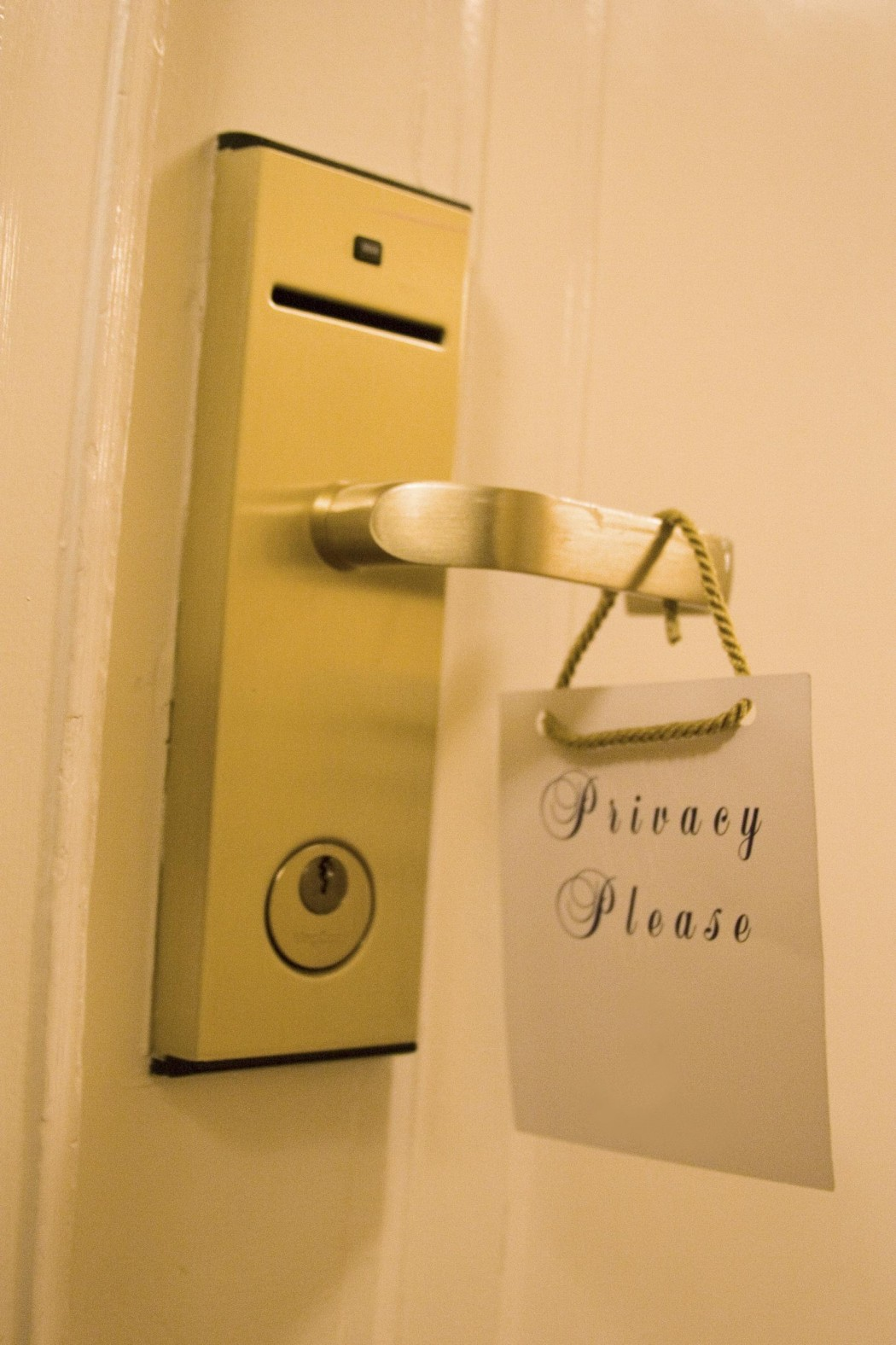 Hotel door handle with privacy sign
